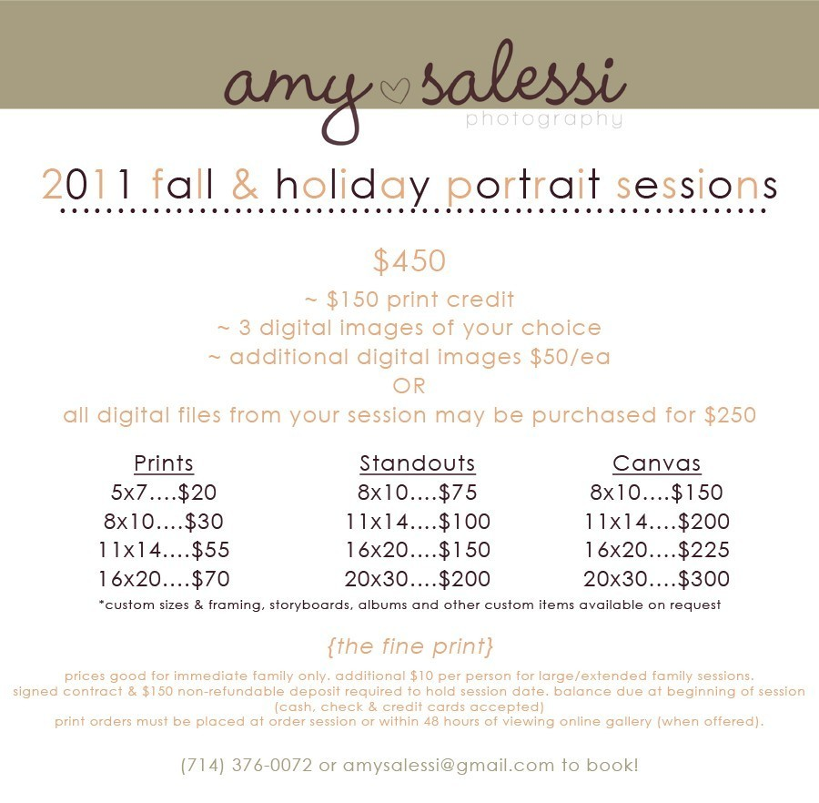 fall & holiday portrait sessions - new prices! | Amy Salessi